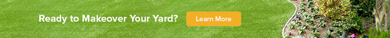 learn more about landscape turf