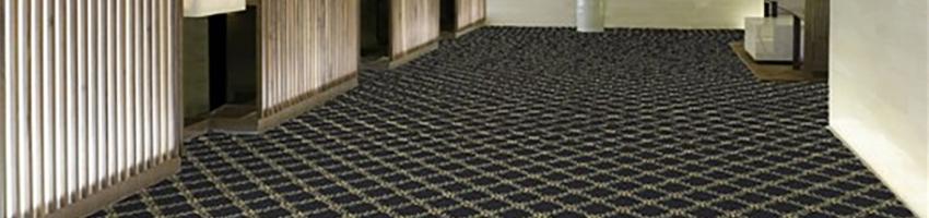 Shaw Cannonboro Carpet
