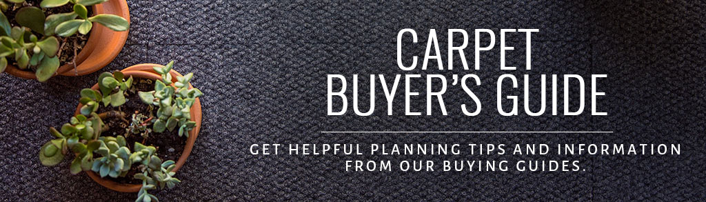 Carpet Buyers Guide