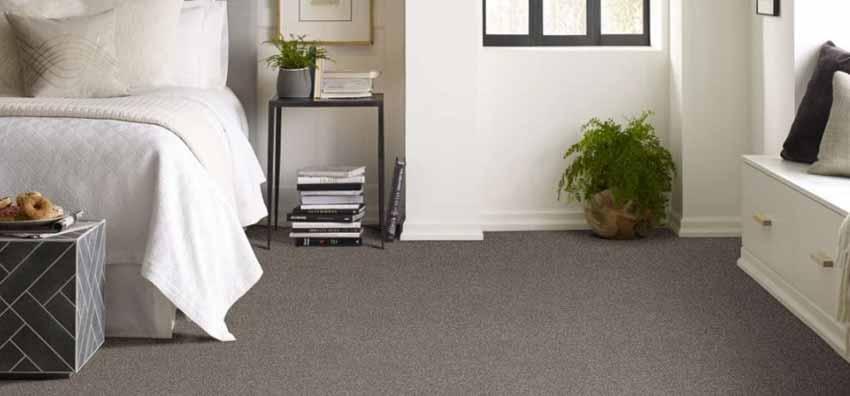 Shaw Perpetual I Carpet