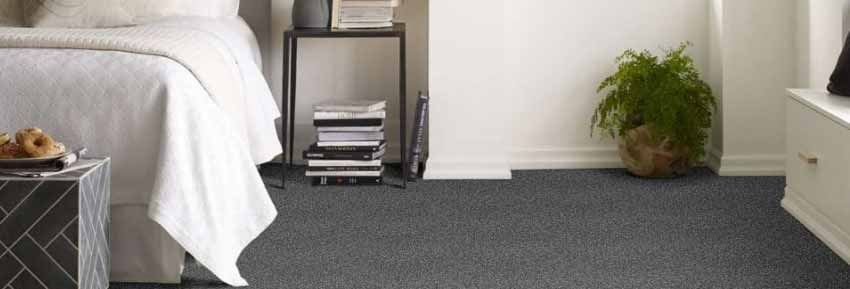 Shaw Charmed Hues Carpet
