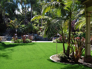 Landscape turf