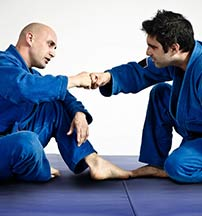 Martial Arts Mat