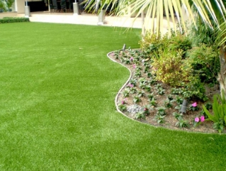 residential and commercial turf
