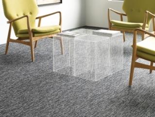 Shaw Function Carpet