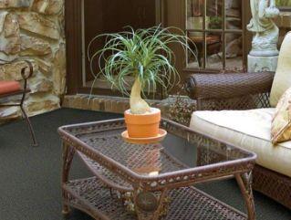 Shaw Gardenscape Outdoor Carpet
