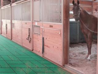 Horse Stall Mats