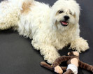 1/2 Diamond Top Dog Kennel Mat Kits