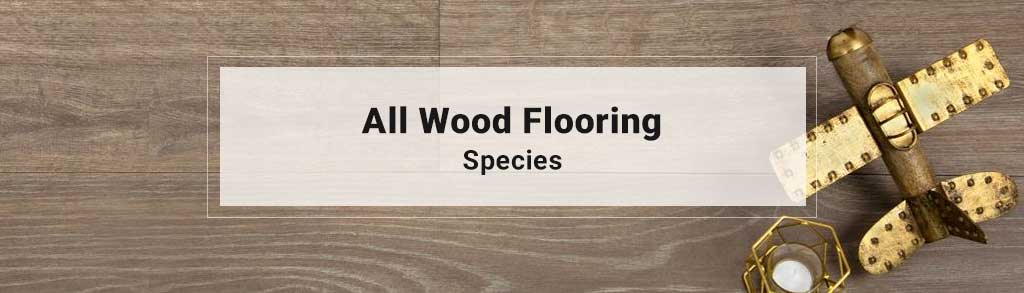 All Wood Shop By Species