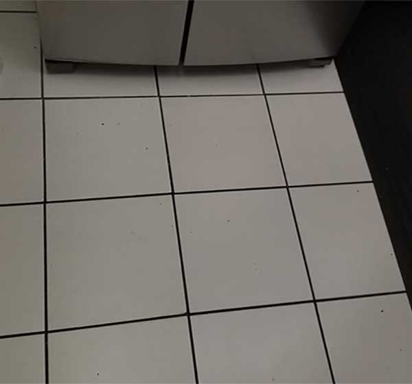Customer review image of  in Kitchen