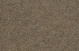 Shaw Succession II Outdoor Carpet