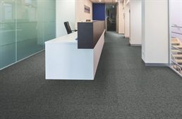 Mohawk Special Coverage Carpet Tile