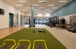 Ecore at Home FITturf Plus