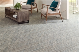 Shaw Sort Carpet Tile