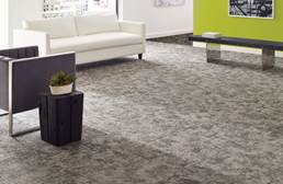 Shaw Biotic Carpet Tile