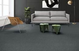 Shaw Beyond Limits Carpet Tile