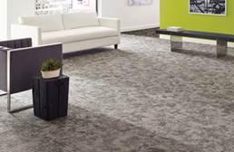 Shaw Biotic Carpet Tile