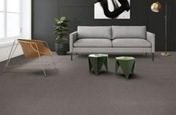 Shaw Ledger Carpet Tile