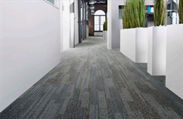 EF Contract Time Zone Carpet Tiles