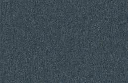 Pentz Uplink Carpet
