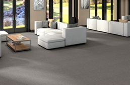 Shaw Profusion Carpet