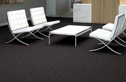 Shaw Elemental Carpet