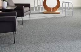 Shaw Engrain Carpet
