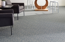 Shaw Engrain Carpet