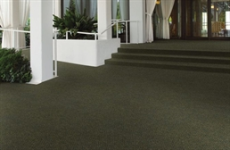 Shaw Succession II Walk-Off Carpet Tile