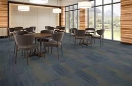 J&J Flooring Well Versed Carpet Tile