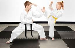 "7/8"" Judo Mats"