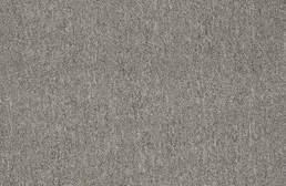 Shaw Neyland III Carpet