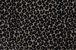 Shaw Cheetah Carpet
