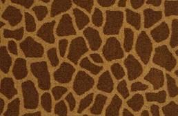 Shaw Giraffe