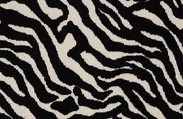 Shaw Zebra