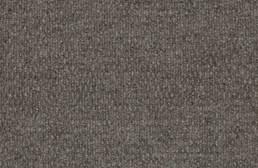 Shaw Bedecked Outdoor Carpet