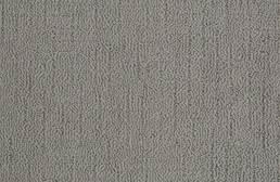Shaw Sense of Belonging Waterproof Carpet