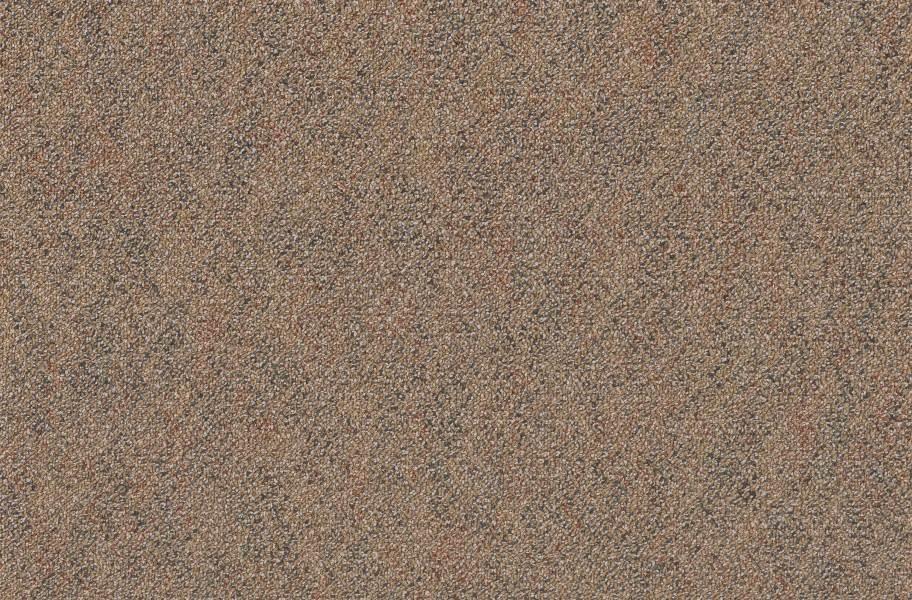 Pentz Premiere Carpet Tiles - Film Festival