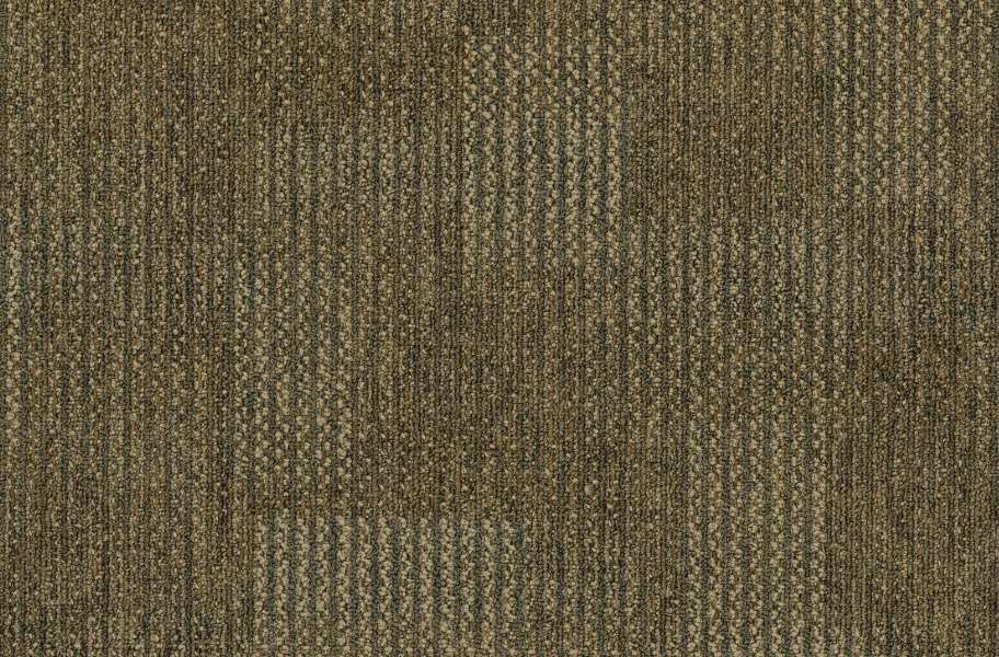 Pentz Revolution Carpet Tiles - Transformation