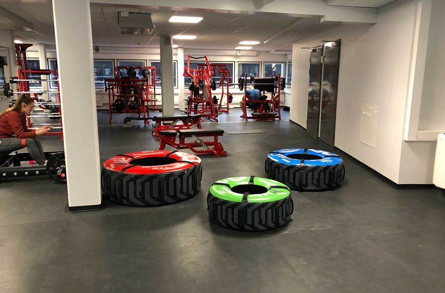 PAVIGYM 7mm Endurance Rubber Tiles