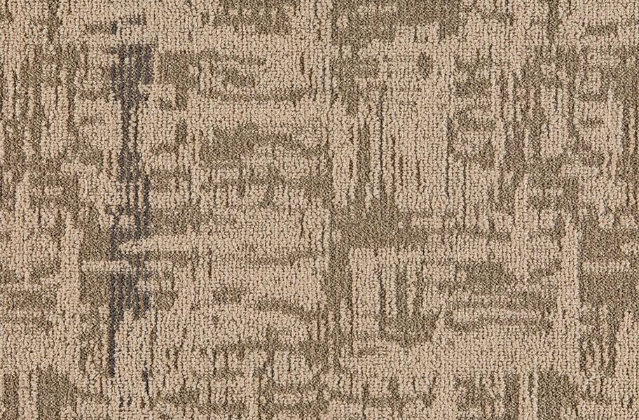 Mannington Script Carpet Tile - Province
