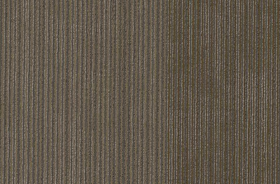 Shaw Disclose Carpet Tile - Front Page