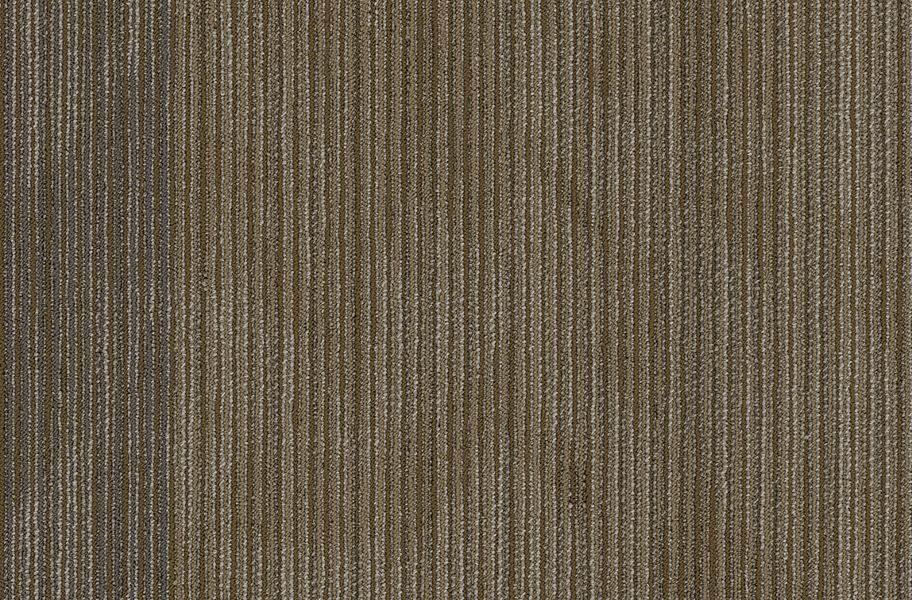 Shaw Declare Carpet Tile - Front Page