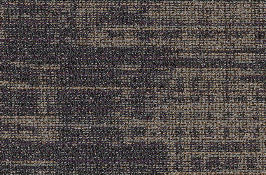 Shaw Harmony Carpet Planks - Intonation