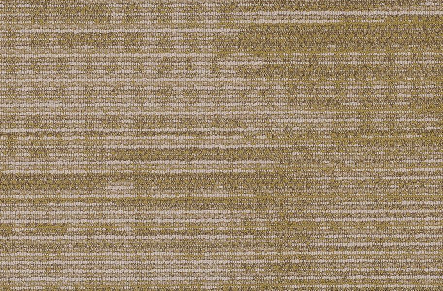 Shaw Harmony Carpet Planks - Cadence