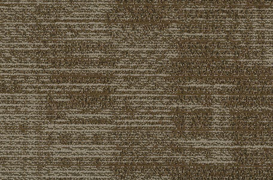 Shaw Harmony Carpet Planks - Tonality