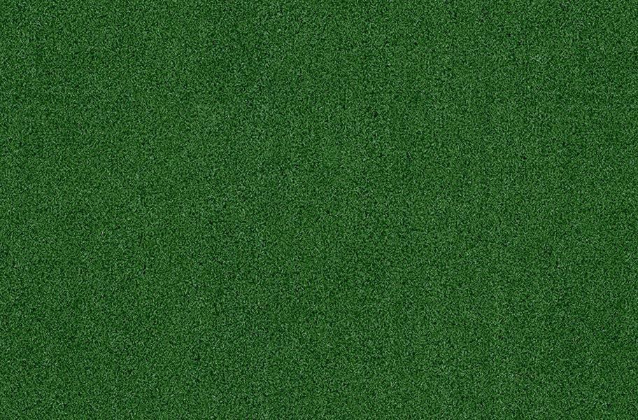 Fresh Lawn Turf Rolls - Green