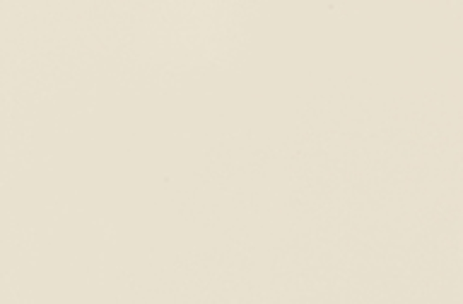Daltile Color Wheel Wall Tile - Almond
