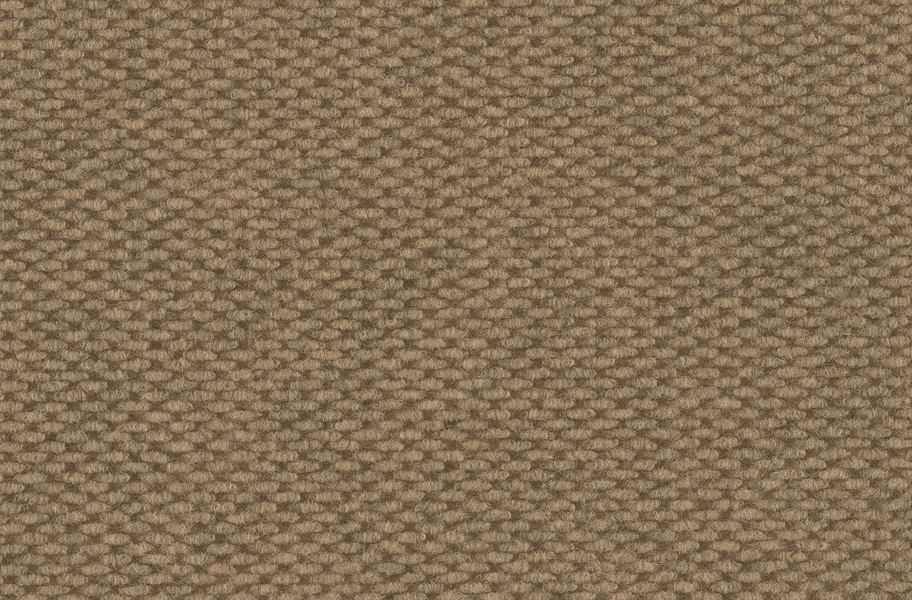 Legend Outdoor Carpet Roll - Bronze