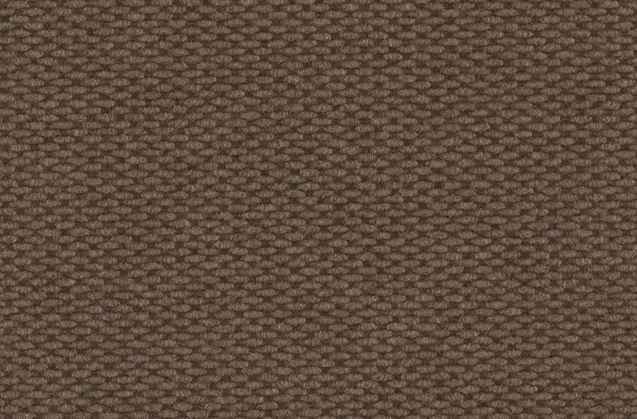 Legend Outdoor Carpet Roll - Coffee